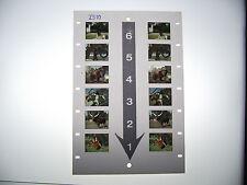 Bildkarte ZS 10 Zoo 3D Betrachter Stereomat Stereomatkarte 3D Karte Stereokarte