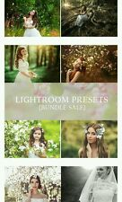 300 Adobe Photoshop Lightroom presets brushes post edit images pictures bundle
