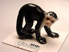 "Little Critterz - LC411 ""Friar"" White Headed Capuchin"