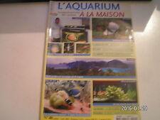 ** L'aquarium à la maison n°40 Apistogramma cacatuoides / Bac planté sans algues