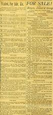 Newspaper Ads Mixed Classifieds 500 Pigeons Butcher Lots Sale Austin Texas 1887