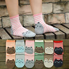 3D Animals Style Striped Women Sock Cat Footprints Casual Cotton Socks Fashion