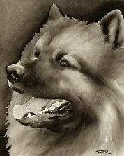 Keeshond Watercolor Art Print Signed by Artist Djr