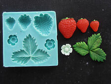 Silicone Mould STRAWBERRIES Sugarcraft Cake Decorating Fondant / fimo mold