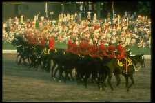 741023 Royal Canadian Mounted Police Musical Ride A4 Photo Print