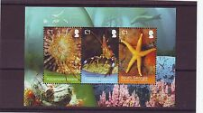 ASCENSION - 2013 M/S 3v MNH MARINE SURVEY JOINT ISSUE W/FALKLANDS & S.GEORGIA