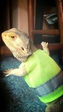 bearded dragon Hi Vis - Can Be Made For Other Small Animals :)