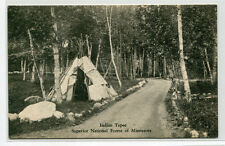 Native American Indian Tepee Superior National Forest Minnesota postcard