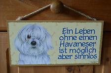 Türschild Tierschild Schild Tafel Holzschild Deko Bild Wandbild ♥ Havaneser Hund
