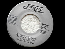 NIGHT OWL BAND~DO WANT YOU WANT BE WHAT YOU ARE~NEAR MINT~CROSS OVER~~ SOUL 45