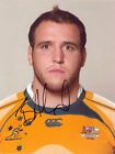 Ben Alexander, Australia rugby, Wallabies, signed 8x6 photo. COA.
