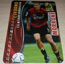 CARD CALCIATORI PANINI 2005-06 LIVORNO MORRONE CALCIO FOOTBALL SOCCER ALBUM