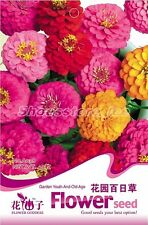 1 Bag 50 Seeds Garden Youth-And-Old-Age Zinnia elegans Flower Seed A038