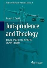 Studies in the History of Law and Justice Ser.: Jurisprudence and Theology in...