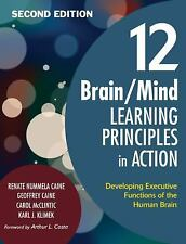 12 Brain/Mind Learning Principles in Action: Developing Executive Functions of t