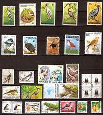 AFRIQUE Oiseaux-Birds  du continent, rapaces,cigogne,palmipedes 1m467