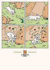 Hergé - Le Temple de Soleil: Snowy and the Lizard   POSTER 50x70