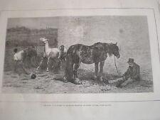 En vente par briton rivière chevaux 1870 old print ref Z3