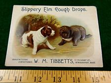 Cute Puppies Dog Slippery Elm Cough Drops, W.M. Tibbetts Candy Victorian Card #T