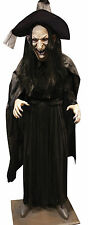 Halloween LifeSize WITCH LEGENDS Prop Haunted House NEW