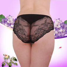Womens Ladies Sexy Lace Mesh Briefs Panties Lingerie Underwear Knickers 3XL