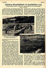 Ansiedlung Kriegsbeschädigter im Havelländischen Luch / Lobetal bei Rüdnitz 1918
