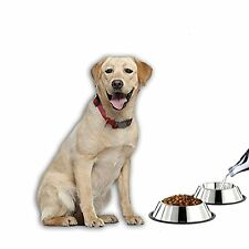Stainless Steel Dog Bowls Set of 2 Food Water Feeder Dish Pet Supplies Puppy Cat