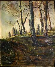 Birken - W.Kowal