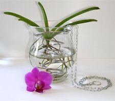 Orchidee Spiral-Cesto per appendere per Vanda Orchid Cattleya fiori vaso vaso