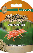 Shrimp King Cambarellus - Food for Crayfish
