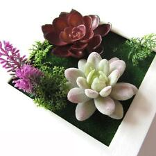 Artificial 3D Beauty Creative Plant Frame Wall Sticker Flower Home Decoration N