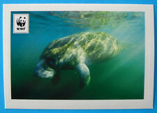FIGURINA COOP WWF IL GIRO DEL MONDO - N.114 - LAMANTINO DEI CARAIBI