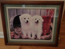 Beautiful picture of pair of white puppy with bushel of walnuts & water pumpRed