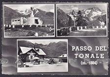 TRENTO PASSO DEL TONALE 18 BRESCIA VEDUTINE Cartolina FOTOGRAFICA viagg. 1951