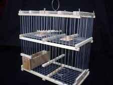 """Cage trébuchet à deux trappes """" rattrapage d'oiseaux échappés """""""