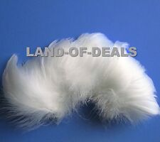 Small White curled goose coquille feathers millinery craft Wholesale bulk