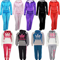 Womens Ladies Girls Velour Tracksuit Addicted SportGym Size S,M,L,XL,2XL,3XL,4XL