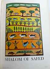 Shalom of Safed The Birds of Paradise Mini-Poster Offset Lithograph  16x11  PP
