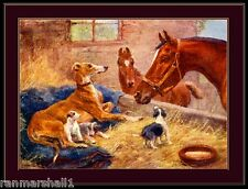 English Print Greyhound Dog Puppy Dogs Puppies Vintage Art Poster Picture