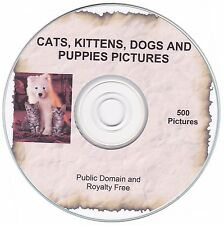 Cats and Dogs Pictures! - 500 public domain and royalty free images on CD