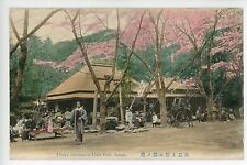Cherry Blossoms at Ueno Park TOKYO Beautiful Hand-Colored 東京 PC 1910s