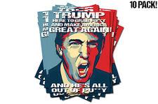 Make America Great Again Donald Trump Grab Pu$$y Bumper Sticker Decals 10 PACK