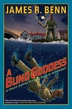 A Billy Boyle WWII Mystery Ser.: A Blind Goddess 8 by James R. Benn (2014,...