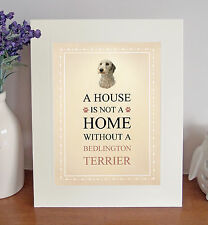 "Bedlington Terrier 10x8"" Free Standing A HOUSE IS NOT A HOME Picture Lovely Gift"