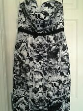 Bnwt FOREVER NEW fitted dress size 10 gorgeous RACES WEDDING