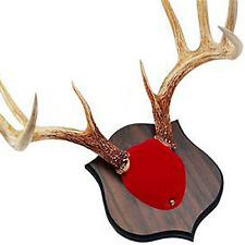 Quaker Boy Deer Horn Antler Mount Kit Red 80100