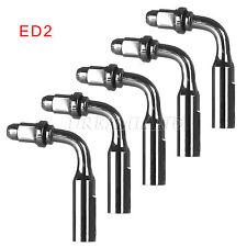 5 Endo 95° ED2 File Adapter Ultrasonic Scaler Insert Tip for SATELEC NSK DTE AQW