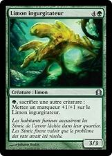 MTG Magic RTR - (4x) Gobbling Ooze/Limon ingurgitateur, French/VF