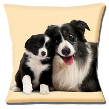 "NEW BORDER COLLIE ADULT & PUP BLACK & WHITE CUTE CUDDLE 16"" Pillow Cushion Cover"