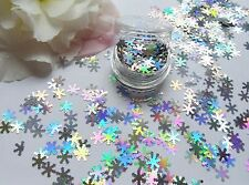 Nail Art Sparkle Holographic *Silver Snowflakes* Pot Spangle Glitter Decorations